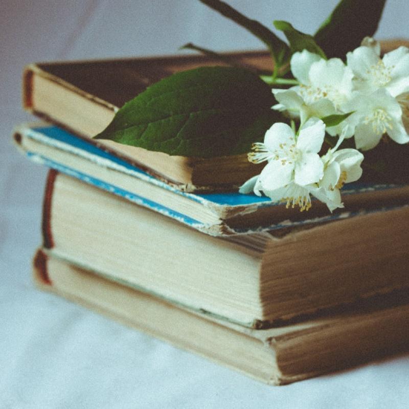 Lasu - tātad domāju. Literatūra kā pamats sarunai par sevi un pasauli