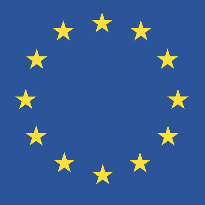 """Saruna """"Eiropas 2019. gada vēlēšanas: populisms un sagaidāmās izmaiņas"""""""