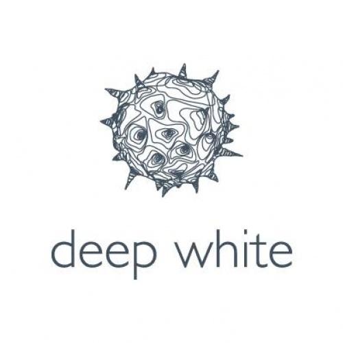 Komunikācijas vadības aģentūra Deep White