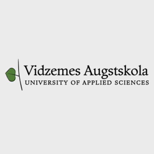 Vidzemes Augstskola, Komunikācijas un mediju studiju virziens
